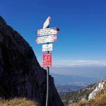 Alta Via dei Rondoi Forcella Palatina