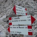 Crossroad Detassis Alimonta