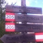 Zumeles Saddle Signs