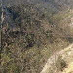 Ferrata Balze del Malpasso first suspension bridge