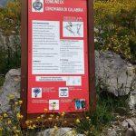 Ferranello Caldanello 2