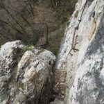 Ferrata Favogna 5