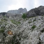 Ferrata Financiers Colac Start