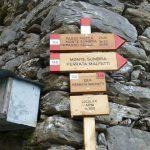 Monte Sumbra Cartels Arni