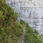 Ferrata Mormol 29 ledge after crossroads