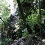 Ferrata Rio Sallagoni Castel Drena 27