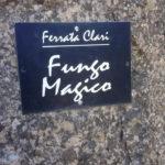 Ferrata Rocca Clarì 36