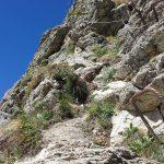 Ferrata Rocca Senghi 12