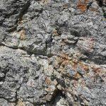 Ferrata Rocca Senghi 15