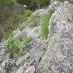 Ferrata Rocca dei Corvi 59