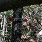 Ferrata Romana Nesi 23 sign approach