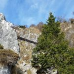 Ferrata Sass Brusai 40