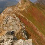 Groppi Camporaghena Monte Alto 12
