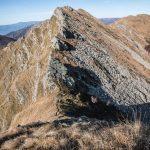 Groppi Camporaghena Monte Alto 2
