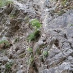 Salto del Capriol Ferrata Rio Secco