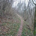 Aided path Cascades 23 return
