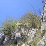 Sentiero Attrezzato GER Coltiglione 19