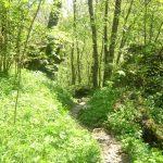 Sentiero Attrezzato GER Coltiglione 25
