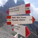 Sentiero Attrezzato Gusella 25 bivio porton