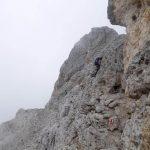 Aided Gusella Trail 27
