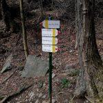 Aided path Moregallo 11