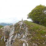 Sentiero Attrezzato Moregallo 7