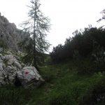 Aided path Olivato Miaron 24 near the shelter