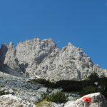 Aided path Olivato Miaron 32 back step mauria
