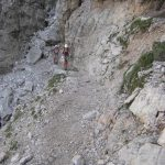 Olivieri aided path 6