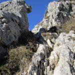 Sentiero Attrezzato Zucco Sileggio 15