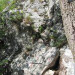 Aided path de le Stel 16