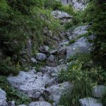 Aided path of the Val Cassina 14 approach