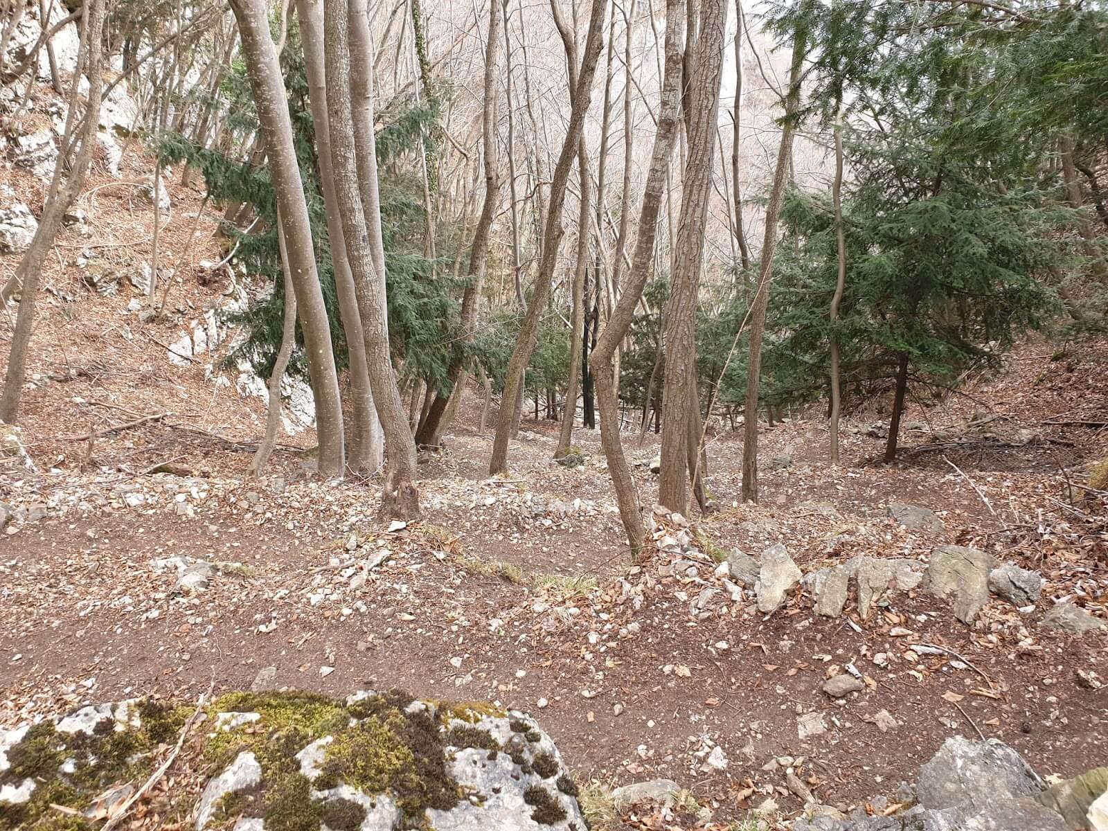 Sentiero Pierino Zuanna rientro 2