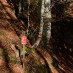 Sentiero Re di Sassonia 28
