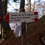 The King of Saxony Trail 30
