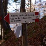 Sentiero Re di Sassonia 30