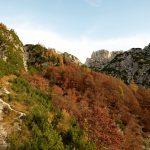 Sentiero Re di Sassonia 7